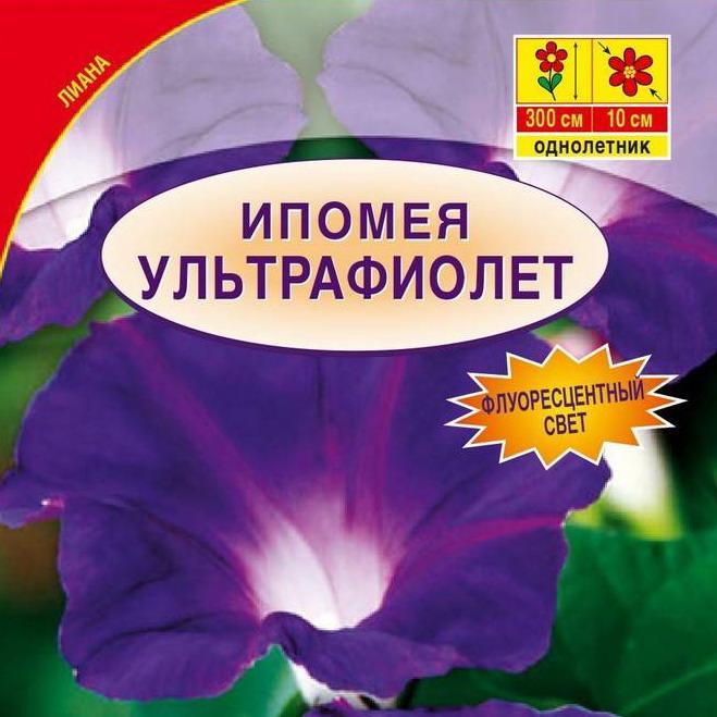 43488-semena-ipomeja-ultrafiolet-02-g-ot-aelita
